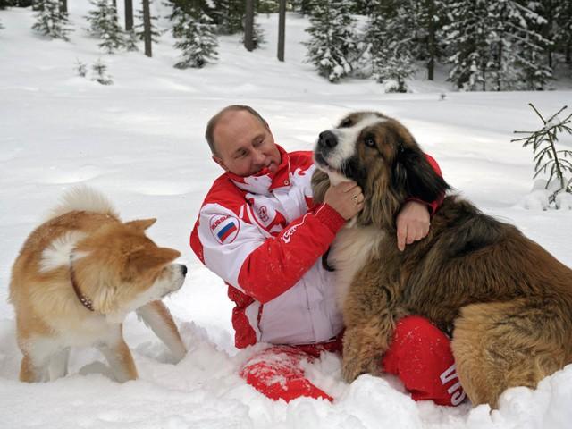 Bận rộn với công việc nhưng tổng thống Putin vẫn dành 2 giờ mỗi ngày cho hoạt động này để giữ sức khỏe và duy trì thể hình đáng ngưỡng mộ - Ảnh 14.