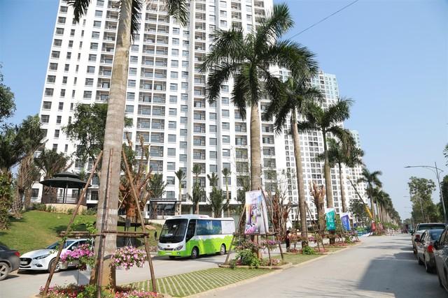 Chỉ có 80 triệu đồng bên trong xe, căn hộ cao tầng từng được hàng nghìn người xếp hàng mua đẹp như mơ - Ảnh 8.