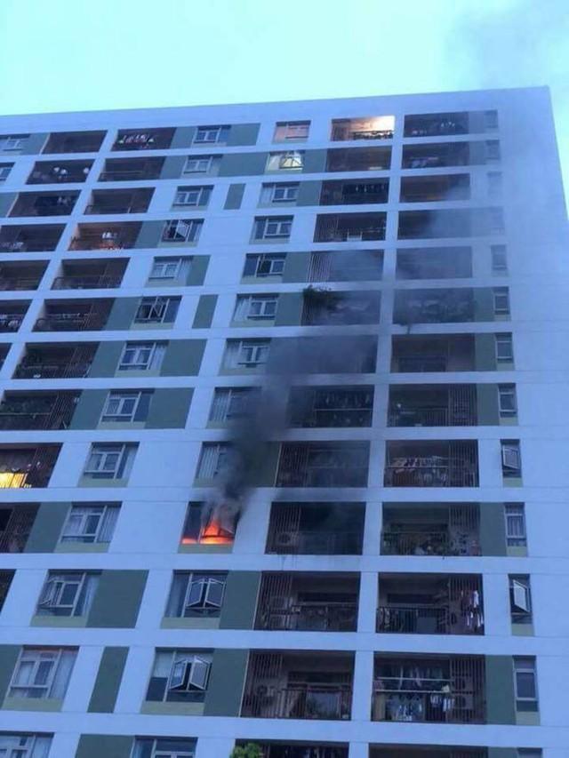 Cháy chung cư quận 2, thầy trò OnlyC cộng hàng trăm cư dân ôm thú cưng bỏ chạy - Ảnh 2.