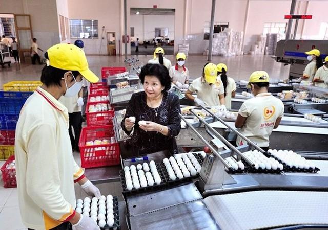 Lạ: Việt Nam nhập khẩu trứng gà, muối hằng năm - Ảnh 1.