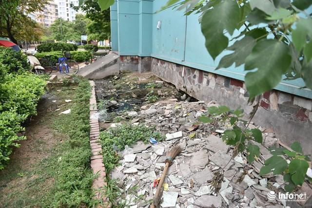 Hà Nội: Hãi hùng bể phốt lộ thiên ngay giữa khu chung cư - Ảnh 8.