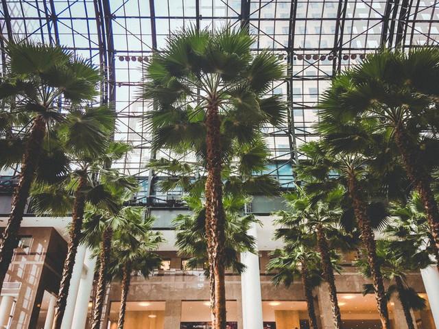 Bên trong trọng điểm mua sắm xa xỉ nhất New York - Ảnh 10.