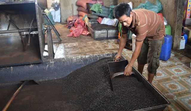 (SỐC) Phát hiện nhiều mẫu cà phê bột không có… cà phê ở Đắk Nông!  - Ảnh 1.