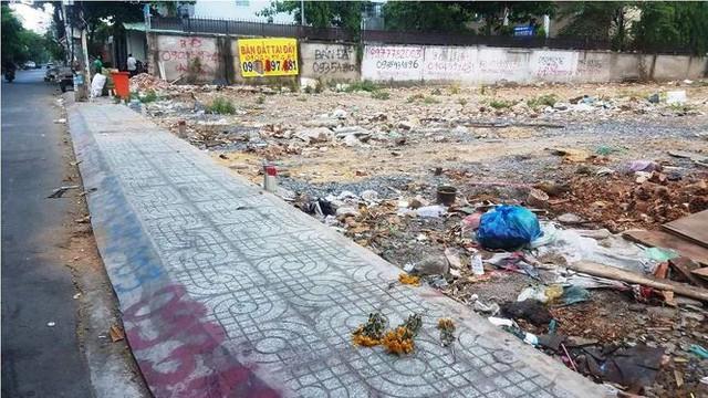 Sốt đất nền lan khắp Sài Gòn, đua nhau tách thửa phân phối nền - Ảnh 9.