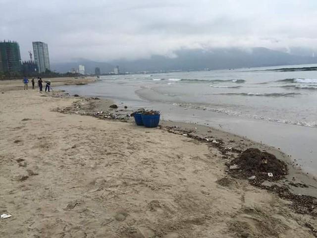 Bãi biển Đà Nẵng ngập rác vì mưa lớn trong ngày hàng nghìn du khách đổ về nghỉ lễ - Ảnh 3.