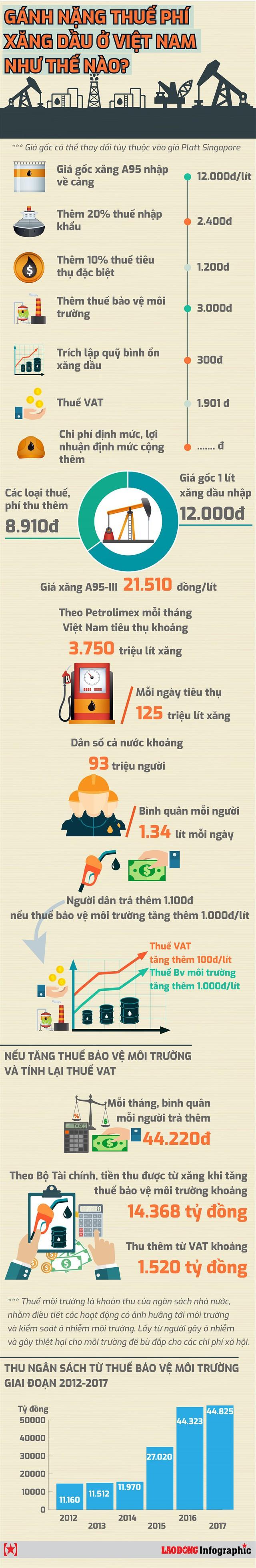 Gánh nặng thuế phí xăng dầu ở Việt Nam như thế nào? - Ảnh 1.