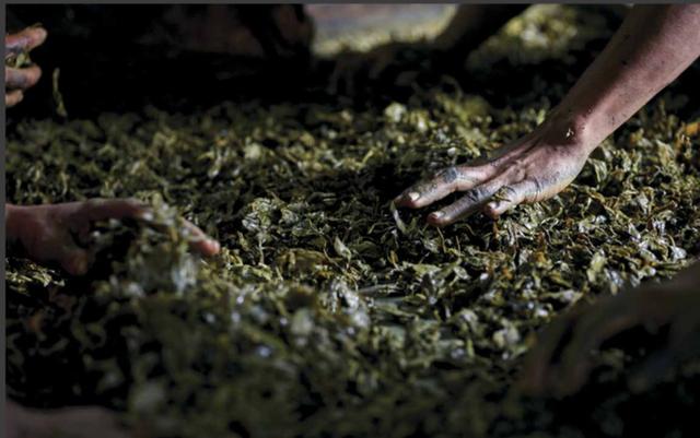 Lạ kỳ món salad lá trà độc đáo chỉ có tại xứ sở Phật giáo Myanmar - Ảnh 2.