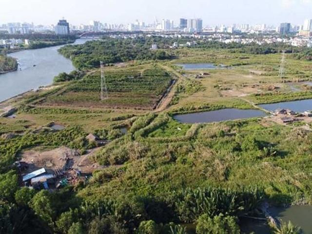 Ông Tất Thành Cang liên quan chuyển nhượng 320.000m2 đất ở Tân Thuận  - Ảnh 1.
