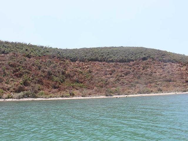 Cử cán bộ 'nằm vùng' ngăn sốt đất Vân Phong - Ảnh 1.
