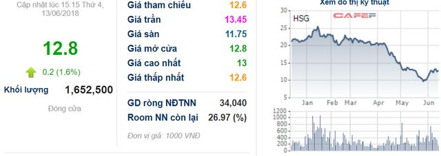 Động thái mới tại Hoa Sen Group (HSG): Công ty riêng Chủ tịch Lê Phước Vũ đăng ký mua thêm 1 triệu cổ phiếu - Ảnh 1.