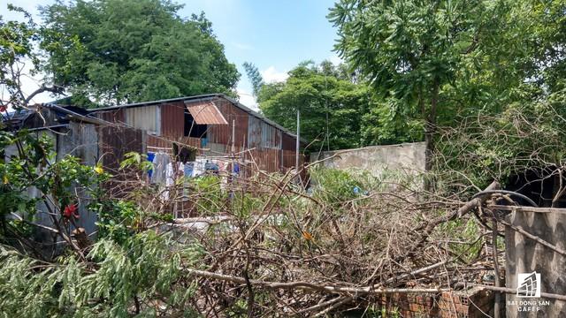 Toàn cảnh Dự án Khu dân cư Bắc Rạch Chiếc (TP.HCM) đầu tư 20 năm không xong, vừa bị yêu cầu thanh tra - Ảnh 9.