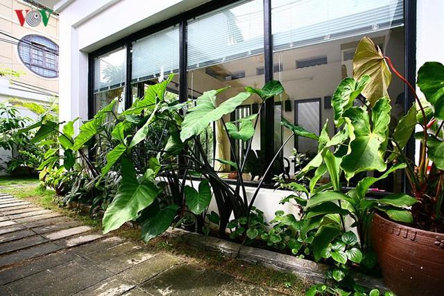 Kinh nghiệm thiết kế sân vườn đẹp - Ảnh 14.