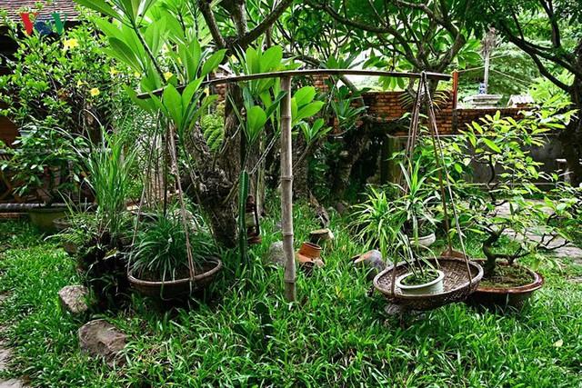 Kinh nghiệm thiết kế sân vườn đẹp - Ảnh 10.