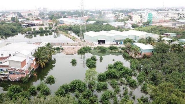 TP.HCM: Cảnh báo lấy đất công viên cây xanh, thể dục thể thao vẽ dự án để bán - Ảnh 1.