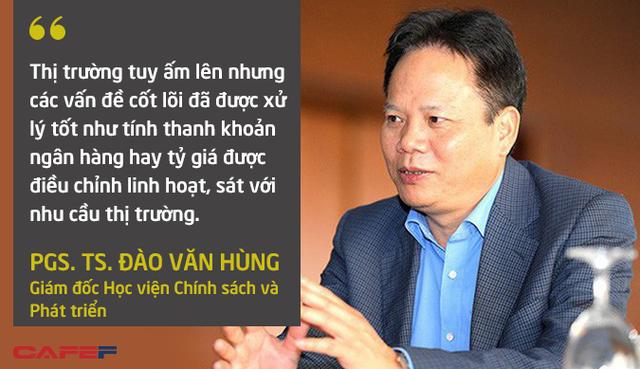 Lời nguyền chu kỳ khủng hoảng 10 năm của Việt Nam được nhìn nhận như thế nào? - Ảnh 5.