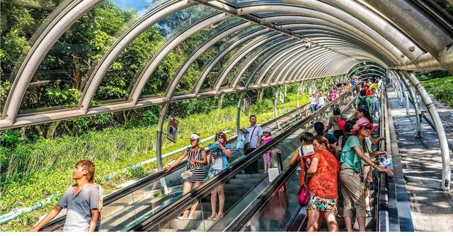 Những hệ thống giao thông công cộng kỳ lạ nhất thế giới: Tàu chạy bằng sức người, thang cuốn dài 800 mét - Ảnh 4.