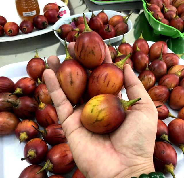 Lạ: Cà chua 300 nghìn đồng/kg, thơm mùi dứa, chua như chanh leo - Ảnh 5.