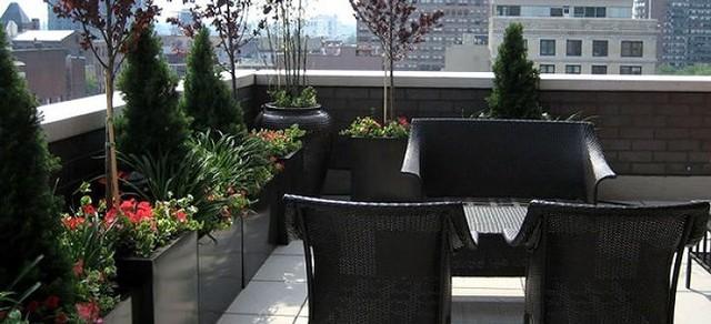 Ý tưởng thiết kế vườn trên sân thượng tuyệt đẹp - Ảnh 9.