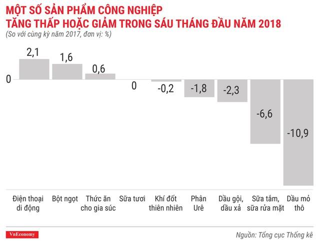 Kinh tế quý 2/2018 qua các con số - Ảnh 8.