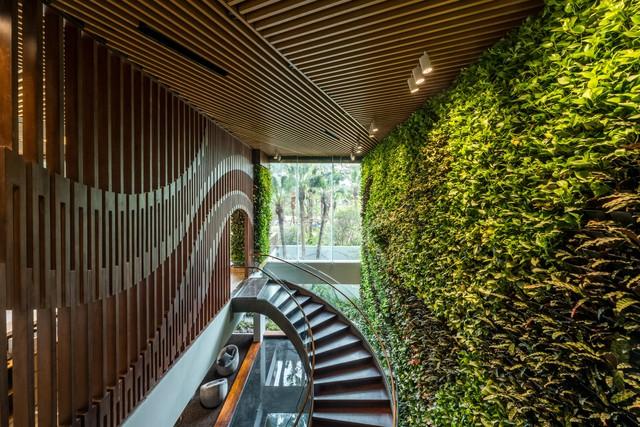 Tòa nhà có nhiều vườn treo nhất Việt Nam chính thức đi vào hoạt động - Ảnh 2.