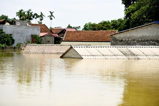 Sau 1 tuần mưa, người Hà Nội dùng thuyền tự chế, bơi trong dòng nước ngập ao bèo về nhà - Ảnh 2.