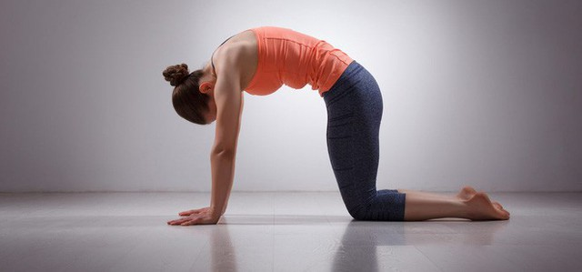 Gợi ý 3 bài tập đơn giản chữa trị đau lưng khi ngồi quá lâu - Ảnh 3.