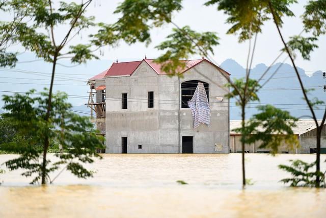 Sau 1 tuần mưa, người Hà Nội dùng thuyền tự chế, bơi trong dòng nước ngập ao bèo về nhà - Ảnh 27.