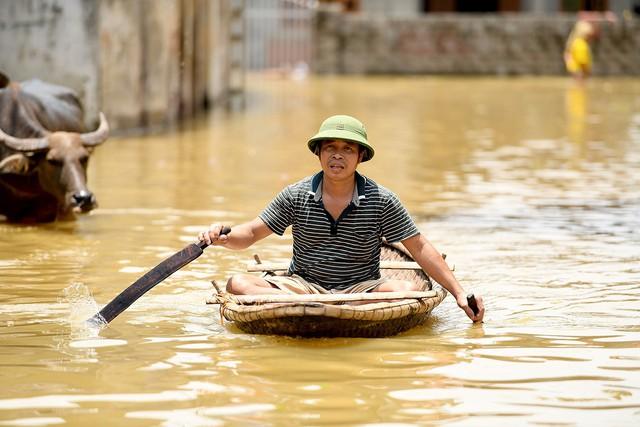 Sau 1 tuần mưa, người Hà Nội dùng thuyền tự chế, bơi trong dòng nước ngập ao bèo về nhà - Ảnh 6.