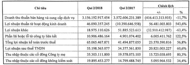 Savico (SVC): Quý 2 lãi 35 tỷ đồng tăng 80% so với cùng kỳ - Ảnh 1.