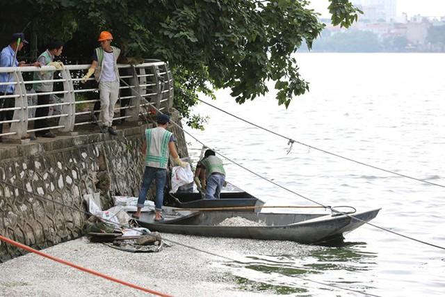 Cá Hồ Tây chết hàng loạt, mùi hôi nồng nặc  - Ảnh 5.