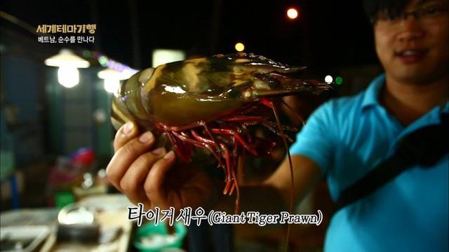 Thiên đường hải sản Bờ Kè (Mũi Né) làm choáng ngợp người xem khi lên sóng đài Hàn Quốc - Ảnh 4.