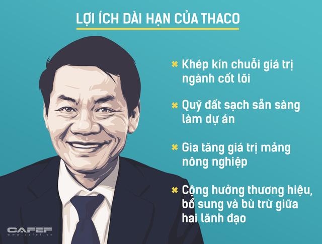 Đầu tư và tái cơ cấu nợ cả tỷ USD vào HAGL, Thaco muốn gì? - Ảnh 3.