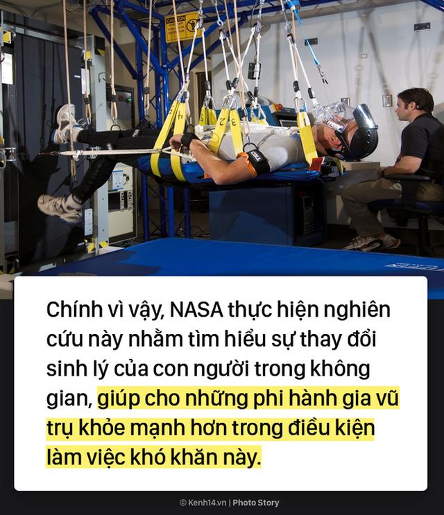 Việc nhẹ lương cao: Chỉ việc nằm trong 60 ngày, NASA trả bạn 2,3 tỷ đồng - Ảnh 6.