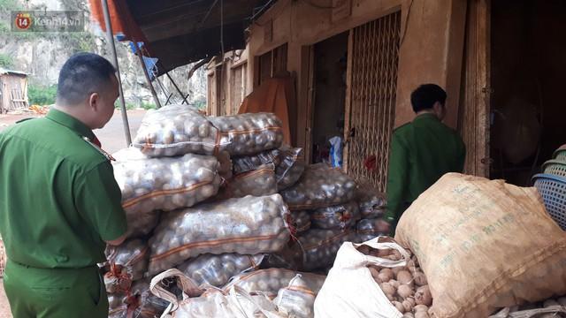 Nông dân khốn khổ vì nông sản Trung Quốc nhái hàng Đà Lạt: 3 tháng trồng khoai không bán được đồng nào, chỉ biết khóc... - Ảnh 6.