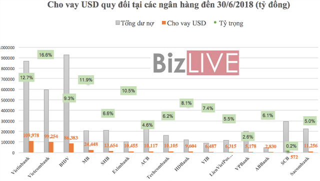 """Siết tín dụng ngoại tệ: Ngân hàng nào đang """"ôm"""" cho vay USD nhiều nhất? - Ảnh 2."""