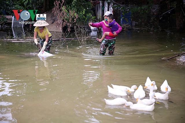 Ảnh: Sau ngập lụt dài ngày, dân Chương Mỹ đối mặt bệnh lở loét da - Ảnh 13.