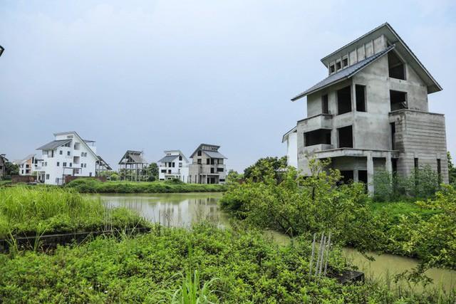 Cận cảnh dự án villa 2.000 tỉ đồng bỏ hoang của Lã Vọng - Ảnh 4.