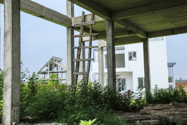 Cận cảnh dự án villa 2.000 tỉ đồng bỏ hoang của Lã Vọng - Ảnh 7.