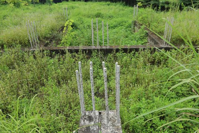 Cận cảnh dự án villa 2.000 tỉ đồng bỏ hoang của Lã Vọng - Ảnh 9.