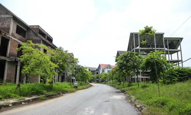Cận cảnh dự án villa 2.000 tỉ đồng bỏ hoang của Lã Vọng - Ảnh 10.