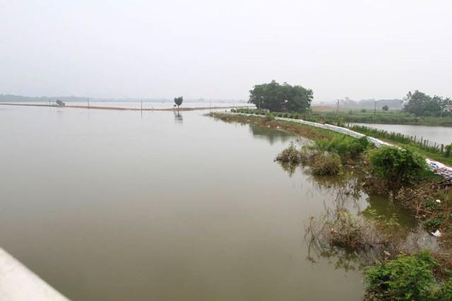 Hà Nội: Nước sông Bùi rút sâu, người dân ra đê câu cá  - Ảnh 1.