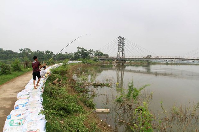 Hà Nội: Nước sông Bùi rút sâu, người dân ra đê câu cá  - Ảnh 11.