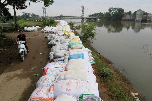 Hà Nội: Nước sông Bùi rút sâu, người dân ra đê câu cá  - Ảnh 4.