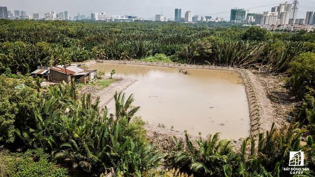 Cận cảnh khu đất vàng 250ha, Phú Mỹ Hưng và nhiều đại gia BĐS khác muốn thôn tính - Ảnh 4.
