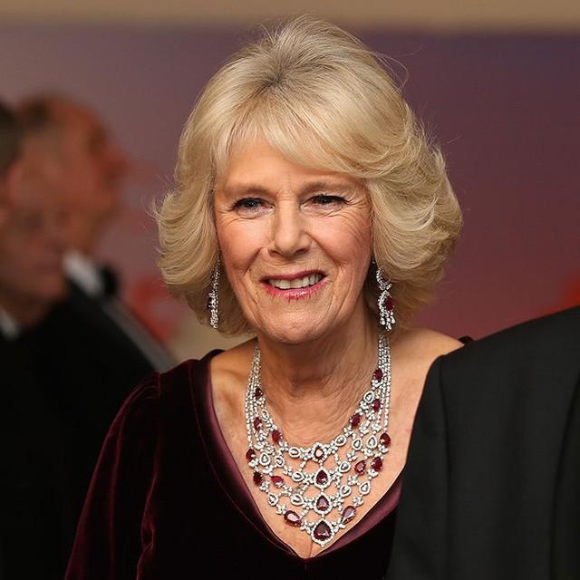 Từng giản dị đến mức nhàm chán, bà Camilla đã thay đổi phong cách thế nào để lọt top 30 nhân vật mặc đẹp nhất nước Anh? - Ảnh 19.