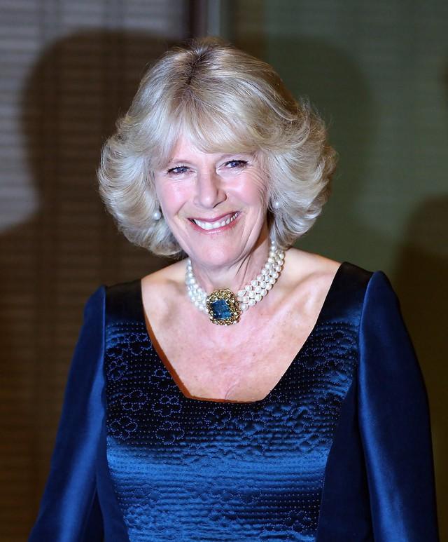 Từng giản dị đến mức nhàm chán, bà Camilla đã thay đổi phong cách thế nào để lọt top 30 nhân vật mặc đẹp nhất nước Anh? - Ảnh 21.
