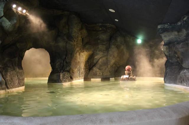 Trải nghiệm du lịch mới lạ: Bạn có thể tắm trong rượu vang hoặc trà xanh tại công viên giải trí suối nước nóng này ở Nhật Bản - Ảnh 5.