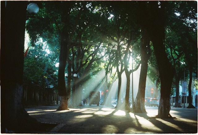 Có một Hà Nội rất khác những ngày này, bình yên và đẹp mơ màng trong nắng mùa thu - Ảnh 2.
