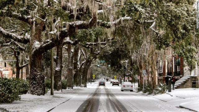 Cây đóng băng trong nhiệt độ lạnh giá ở Savannah, Georgia. Nhiều cơ quan chính phủ, trường học đã buộc phải đóng cửa vì thời tiết quá lạnh. Người dân cũng nhận được khuyến cáo hạn chế ra ngoài trong điều kiện thời tiết cực đoan.