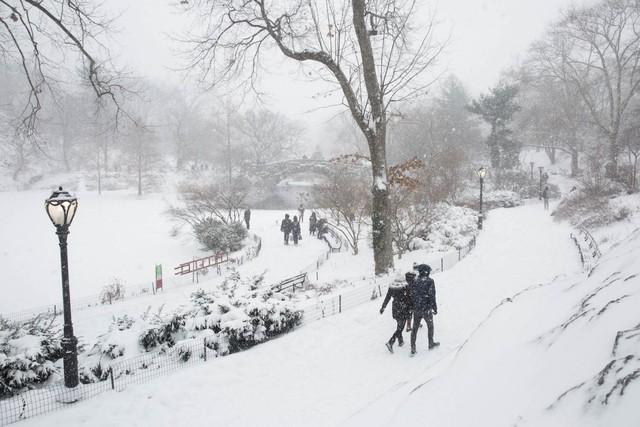 Tuyết bao phủ Công viên Trung tâm.